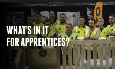 What's in it for apprentices?